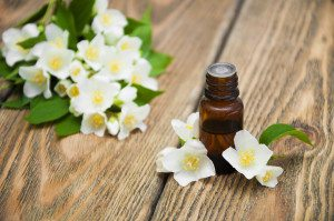 Jasmine essential oil, jasmine oil health benefits, Z Salon and Spa